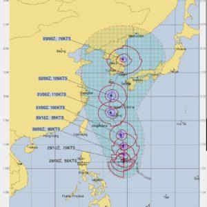 想図 最新 米軍 ヨーロッパ 見方 見れない ECMWF JTWC 10日間予報